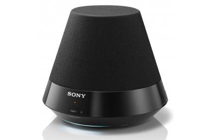 Sony SA-NS310
